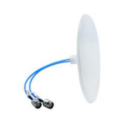 DAS Mimo Antennas